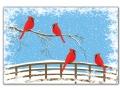 Cardinals - C2457334