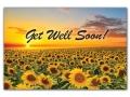 X0031 - Get Well Soon
